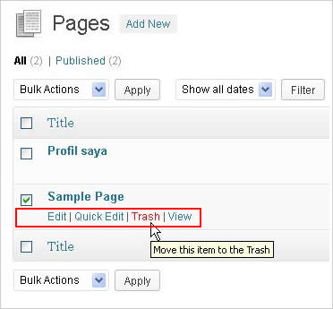Cara mengelola page WordPress
