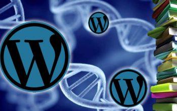 Duplikasi Artikel Web Dengan Mudah di Wordpress 3