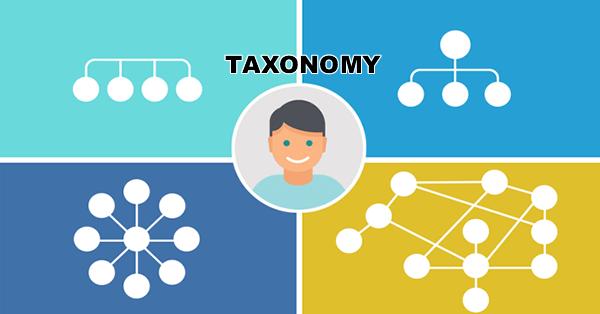 taxonomi image wordpress kursus website toko online